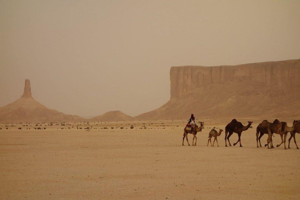 Saudi Arabia Caravan.jpg