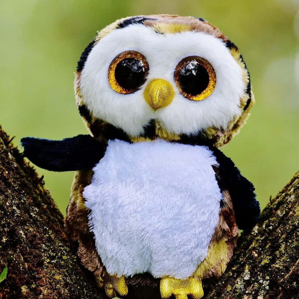 Soft Toy For Teaching English Online.jpg