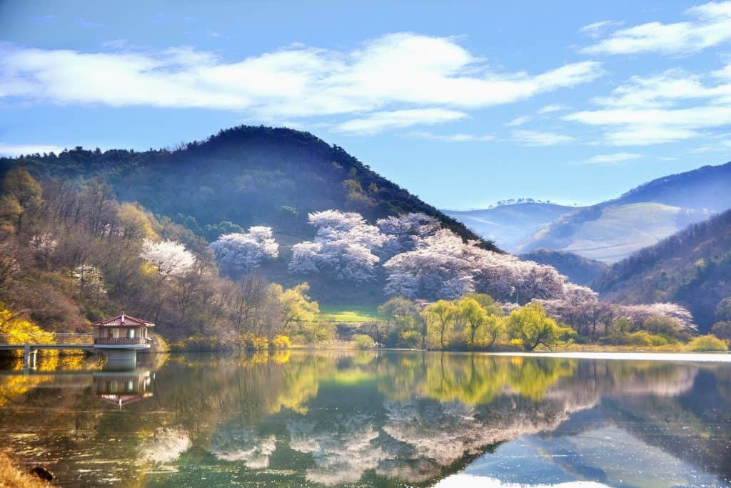 Teaching Opportunities In Korea.jpg