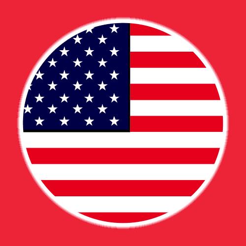 Us Icon